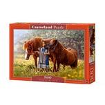 Castorland Puzzle 500 Teile Innere Schönheit