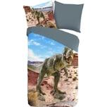 Wende- Kinderbettwäsche Dinosaurier Baumwolle 135 x 200 cm