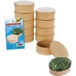 Folia Mini-Pappboxen Oval 10 Stück