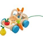 Selecta Verdurino Nachzieh-Wagen mit Sortierfunktion