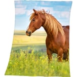 Herding Kuscheldecke Pferde 130 X 160 Cm
