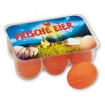 Chr. Tanner Spiellebensmittel 6 Eier in Box