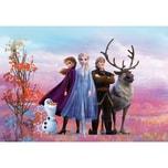 Komar Fototapete - Disney Frozen Iconic 254X368 Cm