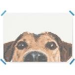 Dot On Art Animals Dog 50 X 70 cm