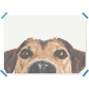 Dot On Art Animals Dog 50 X 70 cm