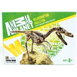 Edu-Toys Animal Planet Velociraptor Skelett