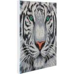 CRAFT Buddy Crystal Art Kit auf Holzrahmen-Leinwand - Weißer Tiger 30 x 30 cm