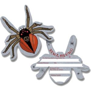 dh konzept Einladungskarten Spinne 6 Stück