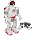 Longshore Limited Xtream Bot Spy Bot
