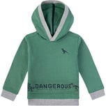 Sanetta Kidswear Sweatshirt mit Kapuze für Jungen Dino