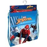 Sportbeutel Spider-Man 40 x 33 cm