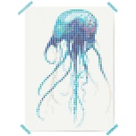 Dot On Art Sea Jelly 50 X 70 cm
