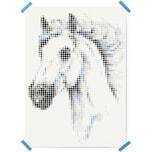 Dot On Art Animals Horse 50 X 70 cm