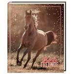 Coppenrath I LOVE HORSES: Beste Freunde Freundebuch