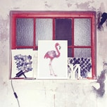 dot on art trend - flamingo 30 x 40 cm