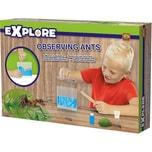 Ses Creative Ameisen beobachten