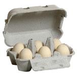 Erzi Spiellebensmittel Eier weiß 6 Stück im Eierkarton
