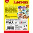 Amigo Ladybohn