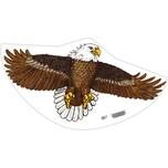 Einleinerdrachen Seeadler 122x68 cm