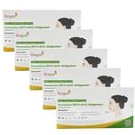 5x Hotgen Corona Schnelltest Laientest Coronavirus Antigentest zur Selbstanwendung