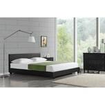 Corium Doppelbett mit Lattenrost Polsterbett mit Bettrahmen Bettgestell 160x200 cm Schwarz