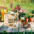 Relaxdays Eichhörnchen Futterhaus zum Stellen