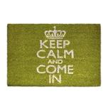 Relaxdays Fußmatte Keep Calm Kokos grün 40x60 cm