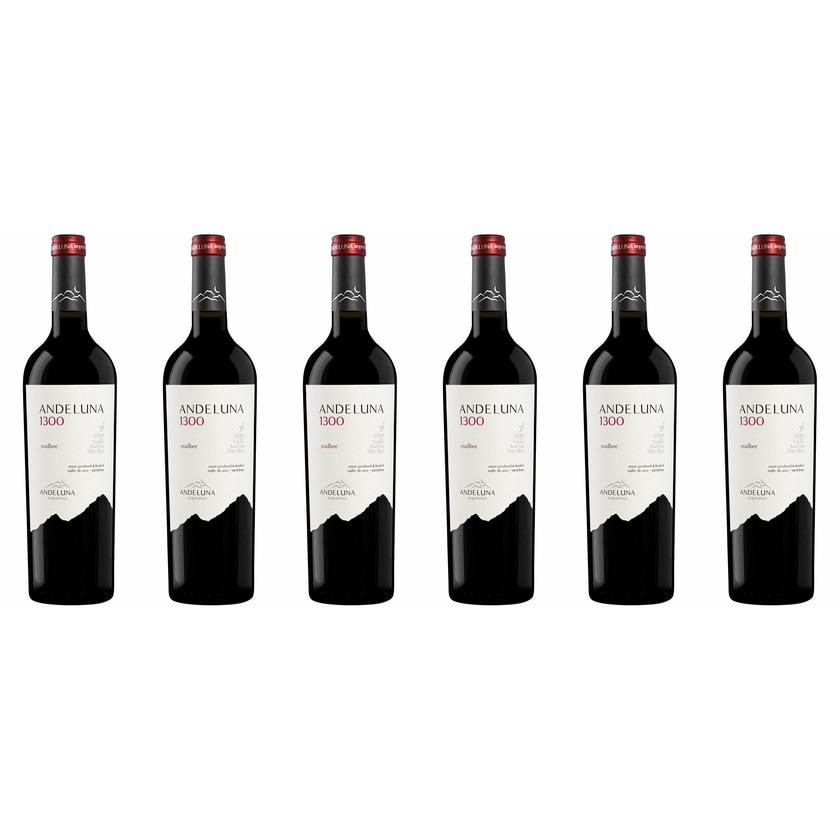 Andeluna Cellars Malbec Andeluna 1300 Mendoza 2017 Wein 6 x 1.5 l
