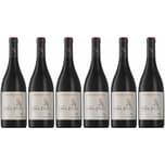Neethlingshof Estate Pinotage Owl Post Stellenbosch 2018 Wein 6 x 0.75 l