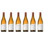 Andeluna Cellars Chardonnay Andeluna Altitud Mendoza 2018 Wein 6 x 0.75 L