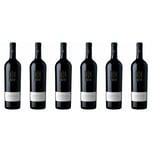 Castello Monaci Artas Primitivo Salento Apulien 2017 Wein 6 x 0.75 l