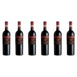 Santi Proemio Amarone di Valpolicella Classico Venetien 2013 Wein 6 x 0.75 l