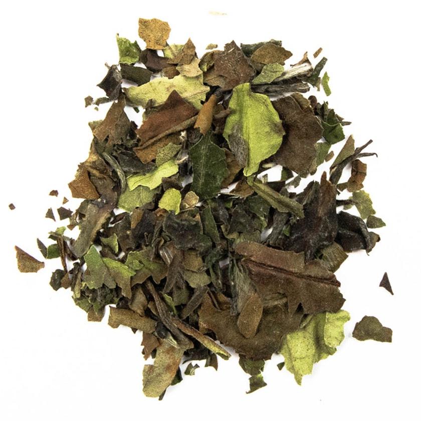 Schrader Weißer Tee China White Pai Mu Tan Bio 100g