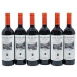 Coto de Imaz Reserva Rioja Rotwein 6x750ml
