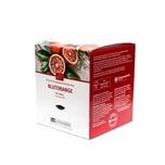 TeeGschwendner Blutorange MasterBag Glas Pyramid Tee BIO 12st, 43g