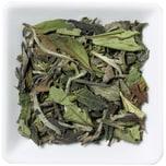 Weißer Tee China Pai Mu Tan Bio