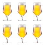 Schott Zwiesel Beer Basic Craft Universal Bierglas klar 450ml 6-teilig