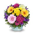 Blumenstrauß Alles Liebe - farbenfroh