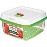 Sistema Frischhaltedose Freshworks Mit Integriertem Frischefilter 2,6L