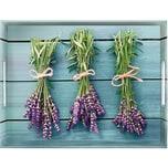Emsa Melamin Tablett Lavendel 50X37