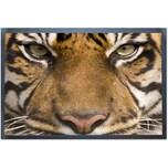 "ACHOKA® Fußmatte ""Tiger"" 40x60 cm"