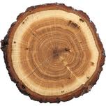"""Contento Platzset """"Tree slice"""" 40x30 cm"""