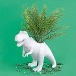 Blumentopf T-Rex