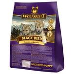 Wolfsblut Black Bird Puppy Large Breed