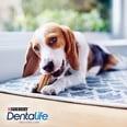 Purina DentaLife Tägliche Zahnpflege-Snacks für kleine Hunde Maxipack