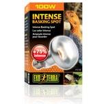 Exo Terra Intense Basking Spot 4+1 gratis 100 Watt