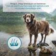 ZooRoyal Individual care - Adult Sensitive mit Lamm