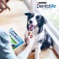 Purina DentaLife Tägliche Zahnpflege-Snacks für mittelgroße Hunde Maxipack
