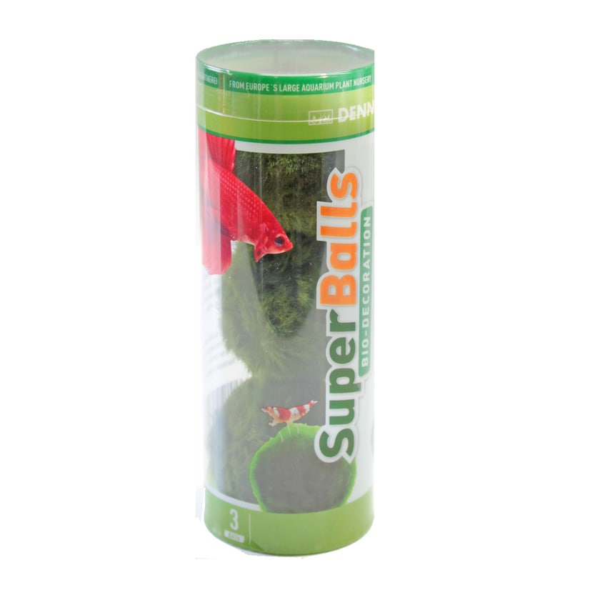 Dennerle Moosbälle Bio-Decoration Superballs